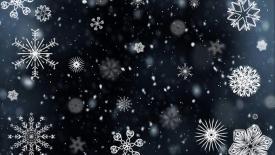 Boże Narodzenie - zmiany terminów odbiorów odpadów